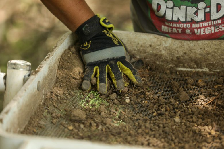Researchers comb through clumps of dirt and soil while looking for artifacts.