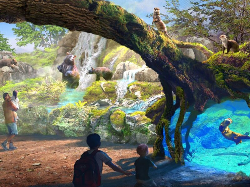 "This conceptual rendering shows the San Antonio's Zoo's plans for a ""Riverwalk"" exhibit."