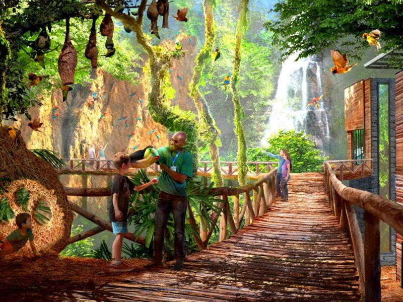 "This artistic rendering shows the San Antonio Zoo's plans for a ""World of Birds"" exhibit."