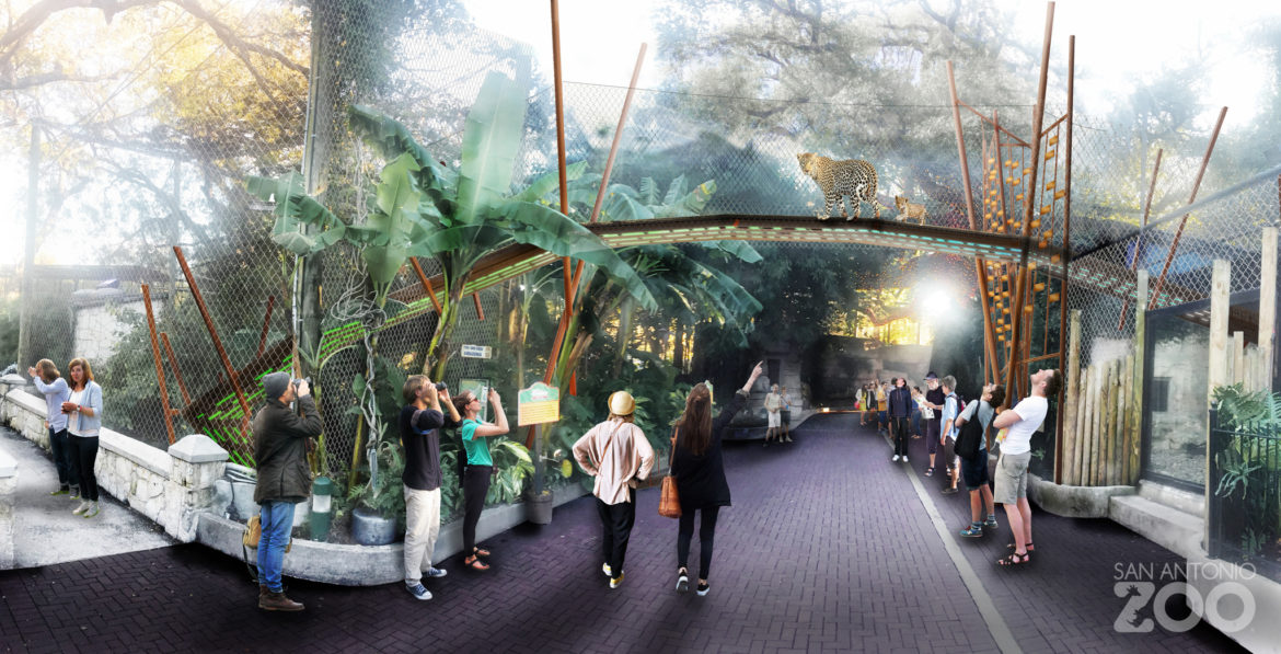 This rendering shows the future of the jaguar exhibit at the San Antonio Zoo.