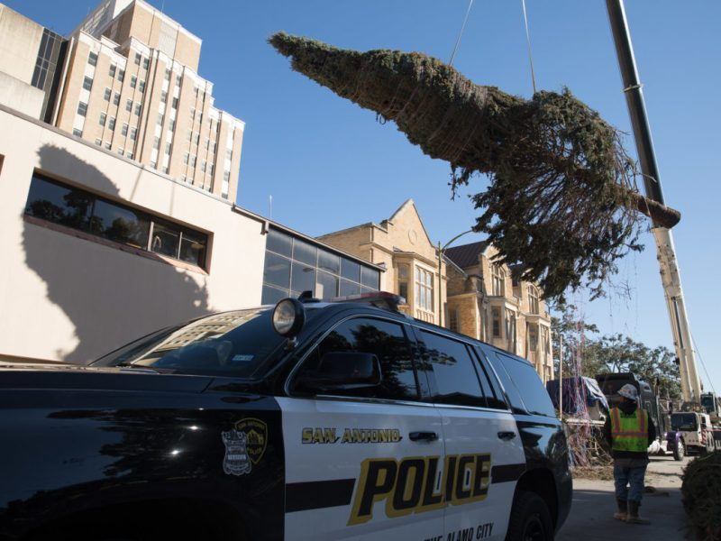 A 50-foot Christmas tree hangs from a crane at Travis Park.