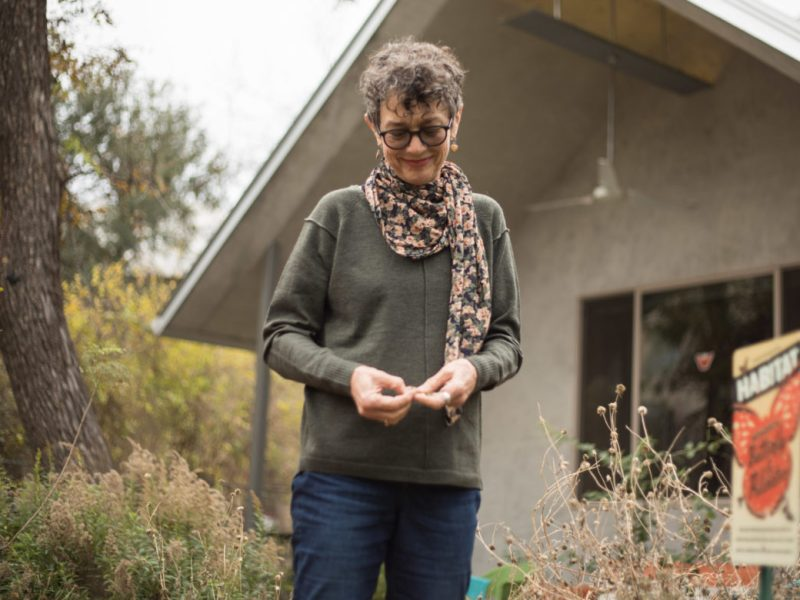 Monika Maeckle holds cowpen daisy seeds in her front yard, which acts as a pollinator garden.