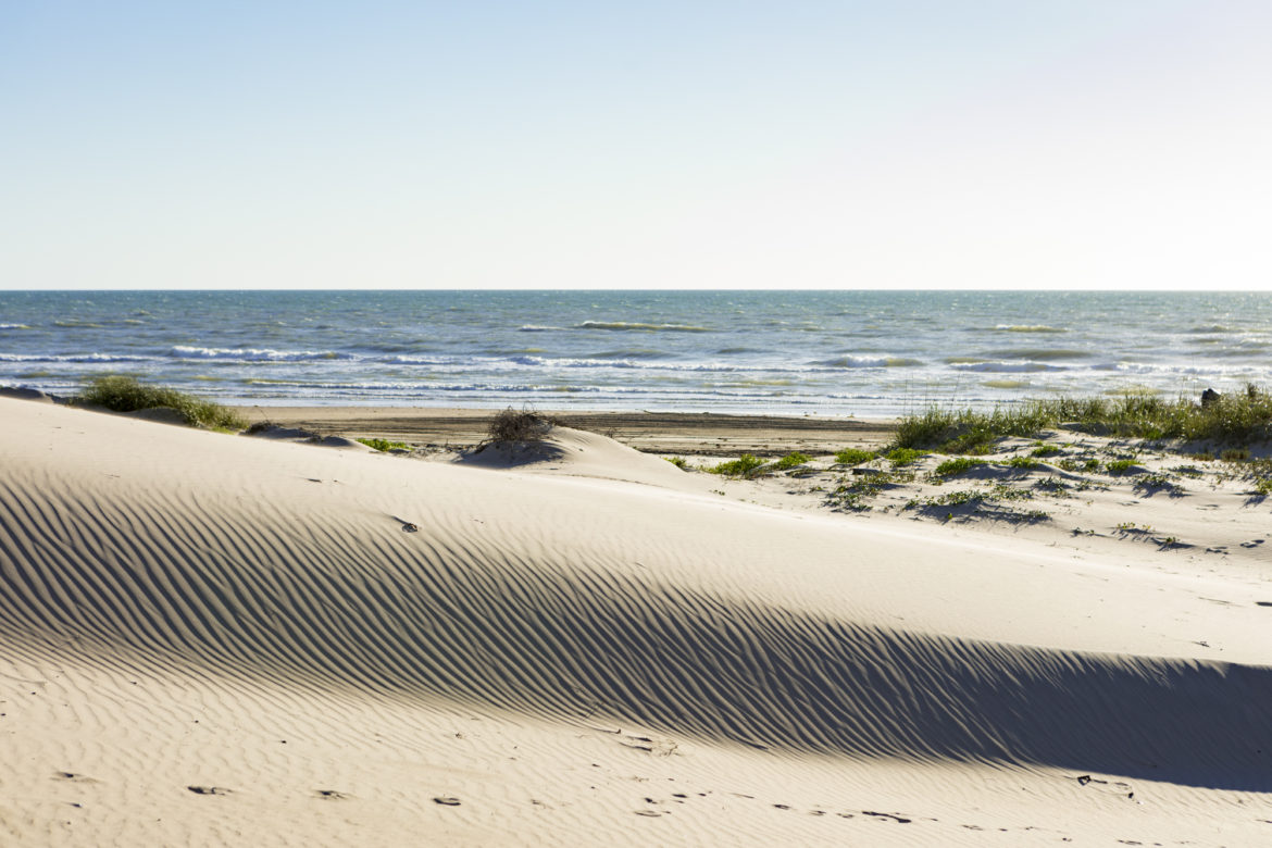 Sand dunes on South Padre Island that are part of the preserve land recently purchased by The Nature Conservancy.