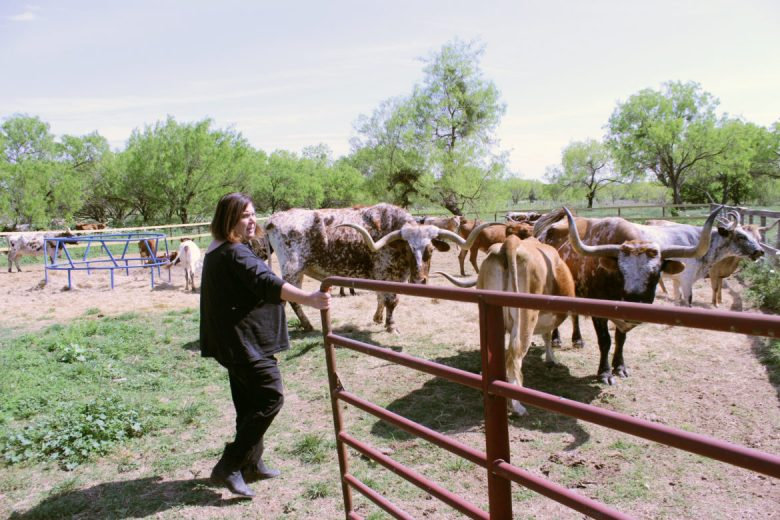 Peggy Oppelt opens a gate to an enclosure full of Texas longhorns at the Land Heritage Institute.
