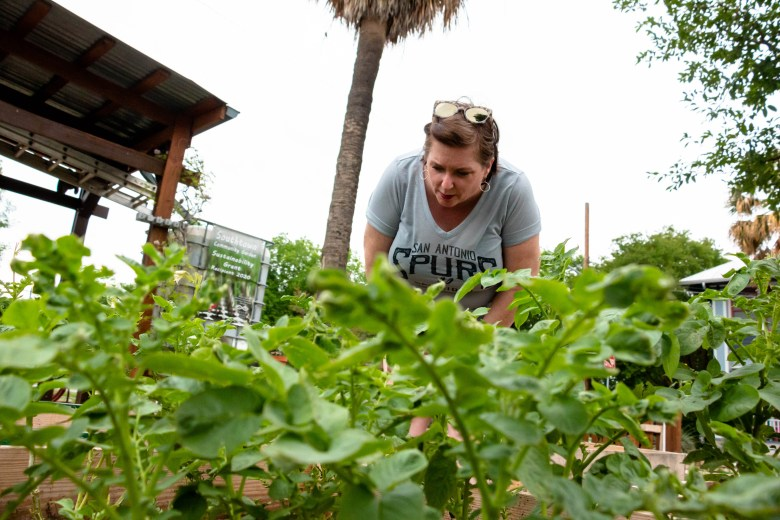 Bridget checks out some of the veggies planted in the Southtown Community Garden.