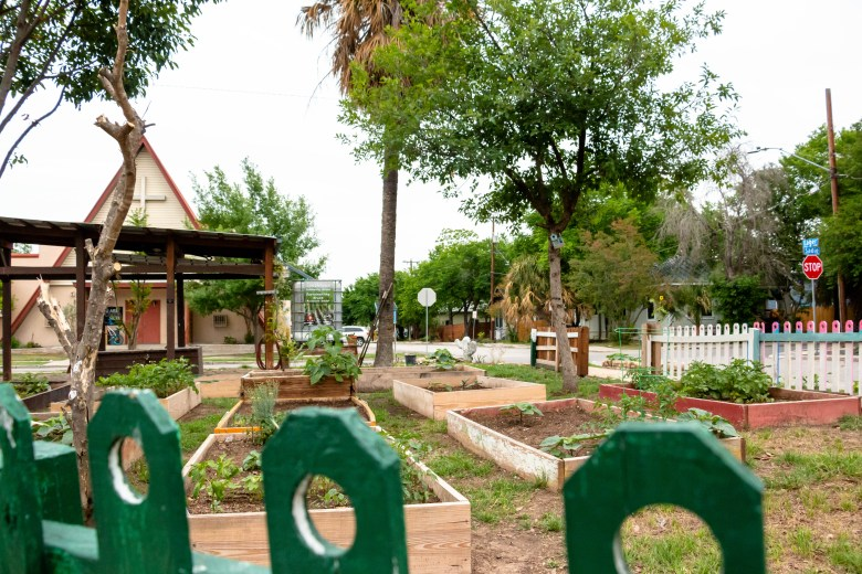 The Southtown Community Garden sits in a triangular lot between Presa, Sadie, and Eager streets.