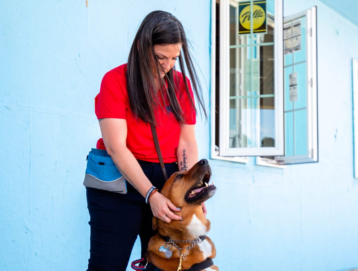 Shilo Schulterman pets her service dog, Javie, and eight year old rescue from South Carolina. Schulterman said that after she returned from Afghanistan in 2012 she considered getting a service dog after trying everything else to manager her anxiety. She said that she has a new lease on life with Javie by her side.