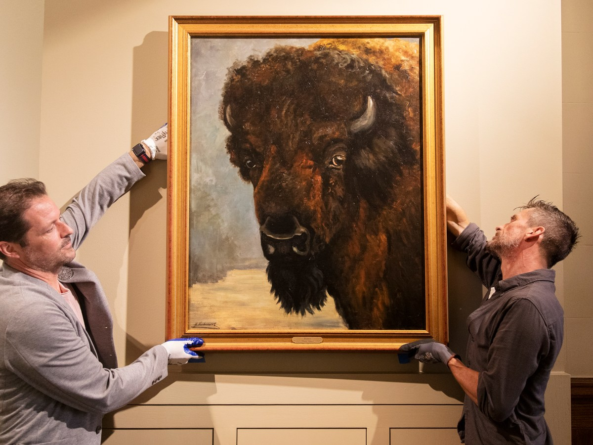"""Jason Kirkland, exhibition manager at the Briscoe Western Art Museum, left, and Aidan Furey hang a painting titled """"Bison"""" by Wilhelm Kuhnert on Tuesday."""
