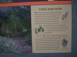Photo of sign with Then and Now information on Salado Creek Greenway.