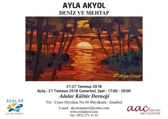 Ayla Akyol'un Şiirsel sergisi açılıyor