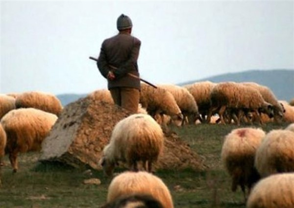 Babacanoğlu'ndan bir Öykü; Yalancı Çoban