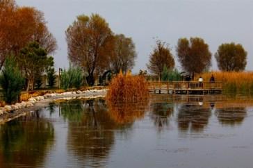 Uçarı Göl Park 25