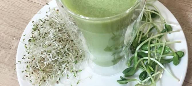 Program de detoxifiere cu smoothie verde din plante sălbatice și vlăstari