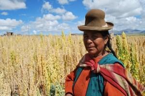 peruana quinoa