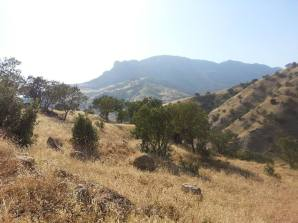 Mount Sanat 2