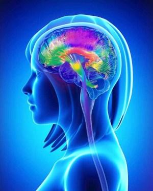 Se ha demostrado con claridad que existe una conexión entre la mente y el cuerpo, y es la Psiconeuroendocrinoinmunología la que nos proporciona ahora algunas respuestas, ayudándonos a entender mejor cómo se transforman las emociones en sustancias químicas, moléculas de información que influyen en el sistema inmunológico y en otros mecanismos de curación del cuerpo.