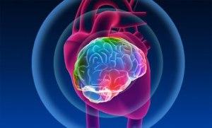 Nuevos datos revelan que la comunicación entre el cuerpo y el cerebro es mucho más sofisticada y compleja de lo que se imaginaba. Los avances tecnológicos nos han permitido alcanzar mediciones más finas del sistema neuroendocrino y la actividad inmunológica, lo que ofrece una visión más amplia en la matriz de respuestas fisiológicas a nivel celular que acompañan a los diferentes estados emocionales.