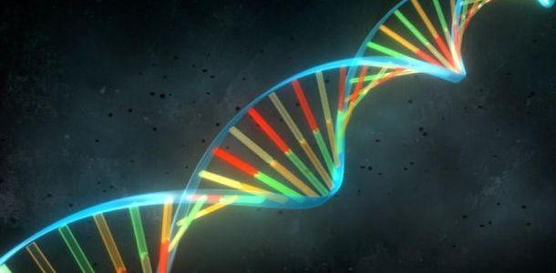 Epigenética: Puedes Cambiar tu ADN