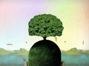 El árbol está vivo dentro de mí. Yo soy el árbol. Yo soy toda mi familia. Nadie tiene problemas individuales porque toda la familia está siempre en juego. El inconsciente familiar existe. Desde el mismo momento en que alguien toma conciencia de algo,hace que todos los suyos también la tomen. Ese alguien es la luz. Si uno hace su trabajo, todo el árbol se purifica.