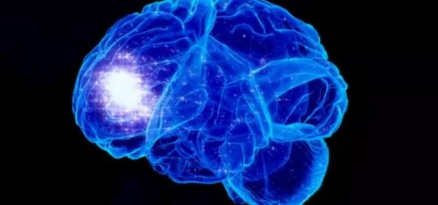 La Meditación Cambia la Forma del Cerebro