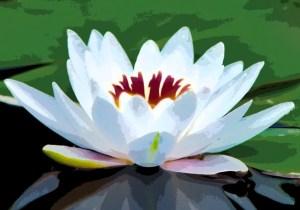 Los 10 símbolos espirituales más populares 5