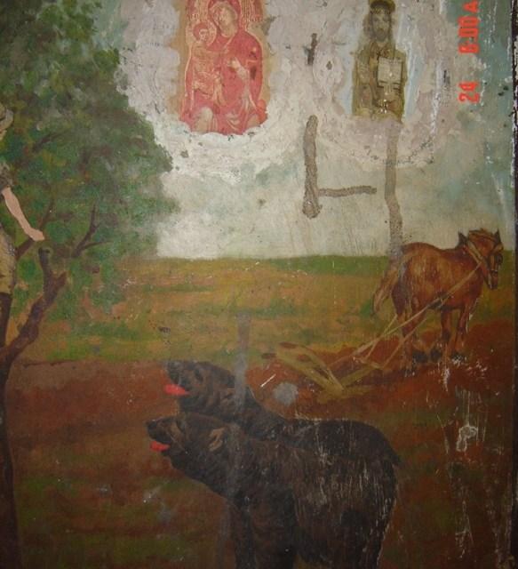 Santuario di San Matteo: Benedizione degli animali
