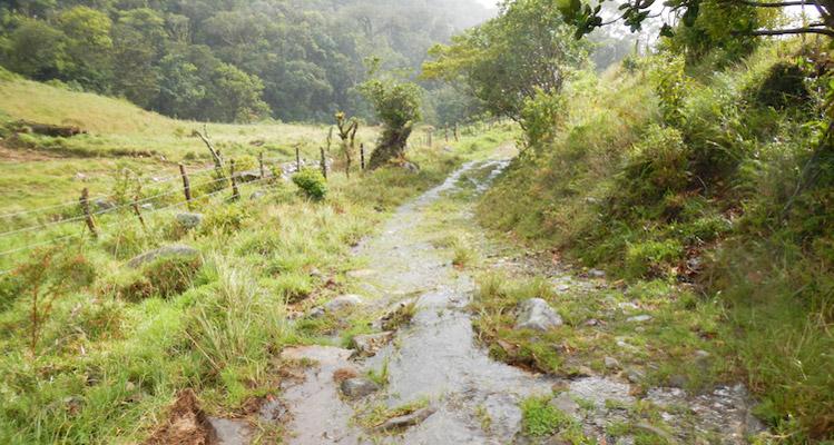 Boquete hiking