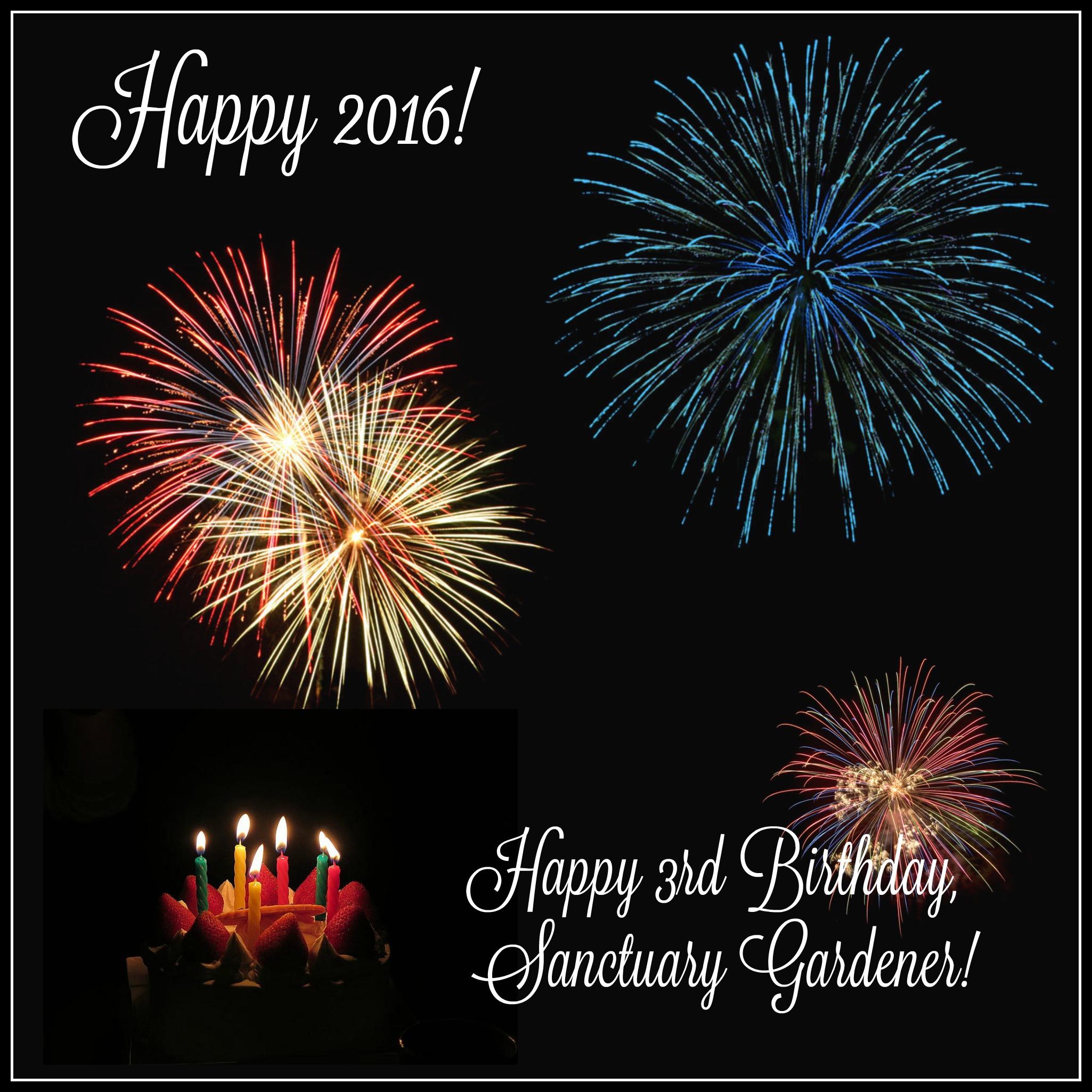 Happy New Year 2016 And Happy 3rd Birthday Sanctuary Gardener Sanctuary Gardener