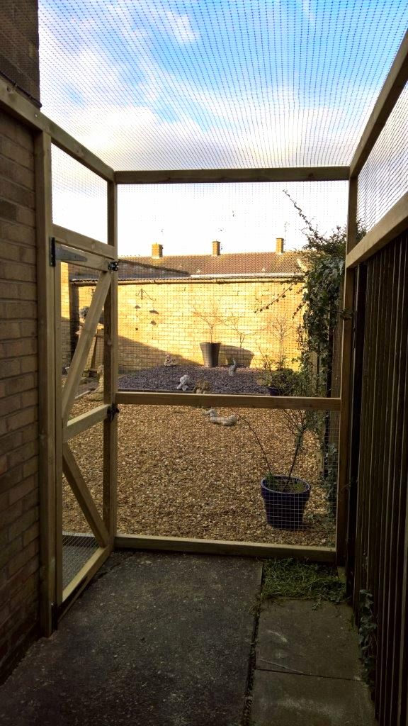 Bespoke catio for alley way