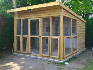 Cattery building by Sanctuary SOS