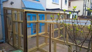 Large catio for cat containment