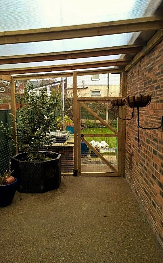 Catio with polycarbonate roof