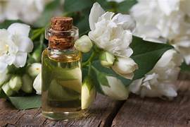 Jasmine Essential oil-10mls-Jasmine Grandiflorum
