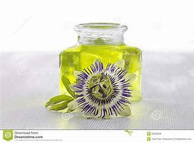 Iris Fragrance Oil-10mls