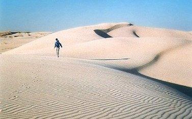 Monahans Sandhills Sand Surfing