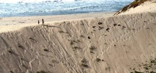 The Pit Sand City