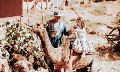 Child Riding a Camel