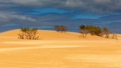 The Big Drift - Sand Dunes in Wilsons Promontory National Park