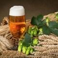 Рецепты масок из пива