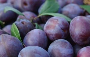 Вкусный рецепт маринованных слив