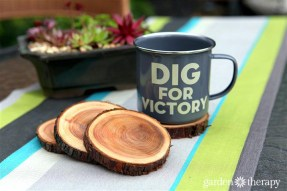 branch-coasters-1