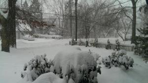 Piles of Snow