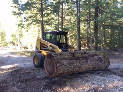sand creek tree service skid steer