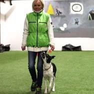 Monica Wickstrøm og Chili FCI 3 Foto: Michelle Foldnes