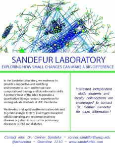 Sandefur Lab Flyer