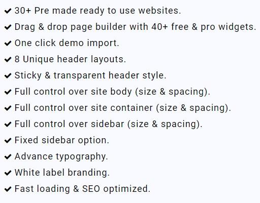 zita wordpress theme review