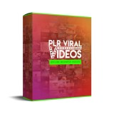 plr viral videos review