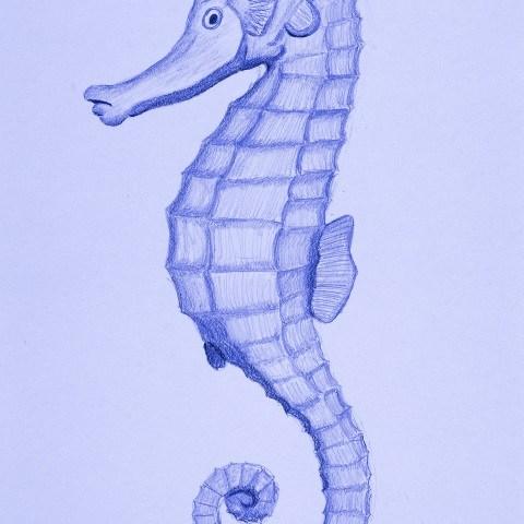 Salty Seahorse - Pastel Blue