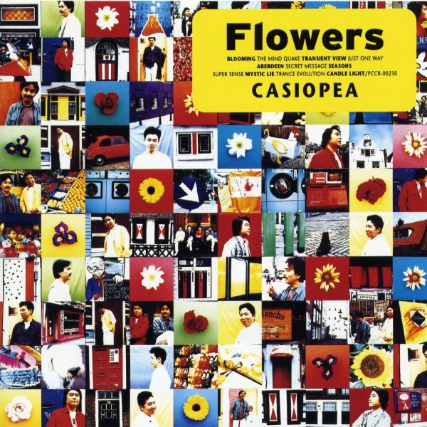 Casiopea – Flowers