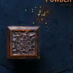 Andhra style Chutney Powder
